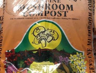 Mushroom Mulch