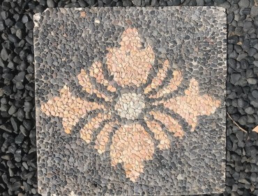 BSS5 Black Apricot Diamond Flower